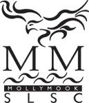 MMSLSC Logo